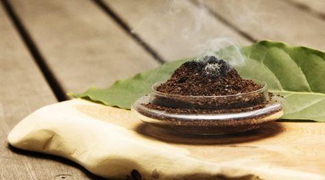 まさか、コーヒーが蚊取り線香の代わりをするなんて! コーヒーで作る「自家製・蚊取り線香」!アウトドアでも大活躍?  健康的でシンプルなライフスタイルを提案する「Simple Organic Life」で紹介されたとっても簡単な虫除けの方法を紹介しましょう。