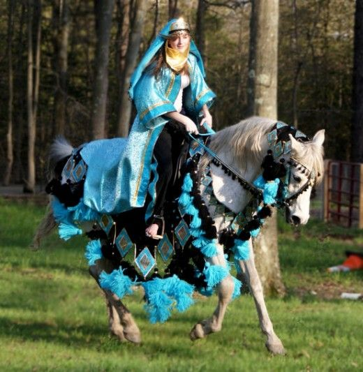 Addison decided she wanted to be THIS for Halloween...and ride the horse side saddle...think I am going to have a problem finding this - my be a little beyond my budget:)
