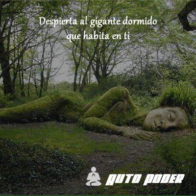 #autopoder #musicapositiva #ritmopositivo #salud #dinero #amor #vida #leydeatraccion #pnl #despierta #despertar #gigante #dormido