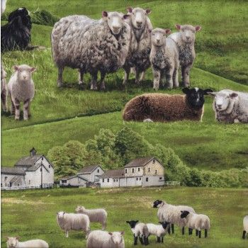 Sheep Border Collie Farm Animal Grass Quilting Fabric From