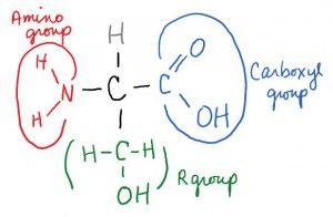Physics good biochemistry colleges