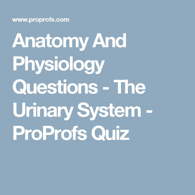 Quiz on Human Bones for Anatomy & Physiology