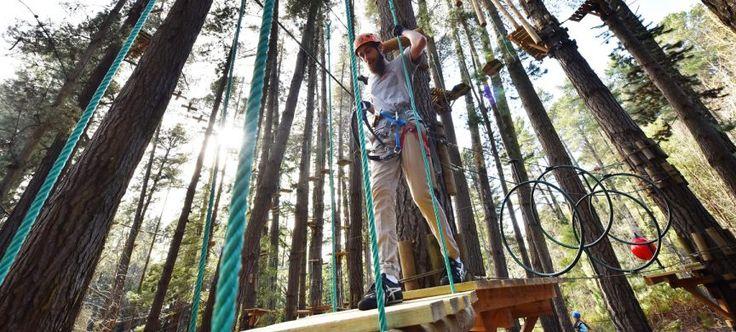 Experience Trees Adventure Ropes Course! New to Hollybank Treetops Adventure. Tasmania's First Outdoor Adventure Hub! Canopy tours. Segway Tours. Trees Adventure. Mountain Biking.