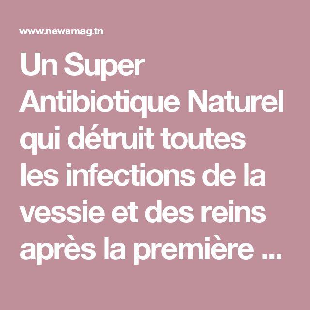 Un Super Antibiotique Naturel qui détruit toutes les infections de la vessie et des reins après la première utilisation … | NewsMAG
