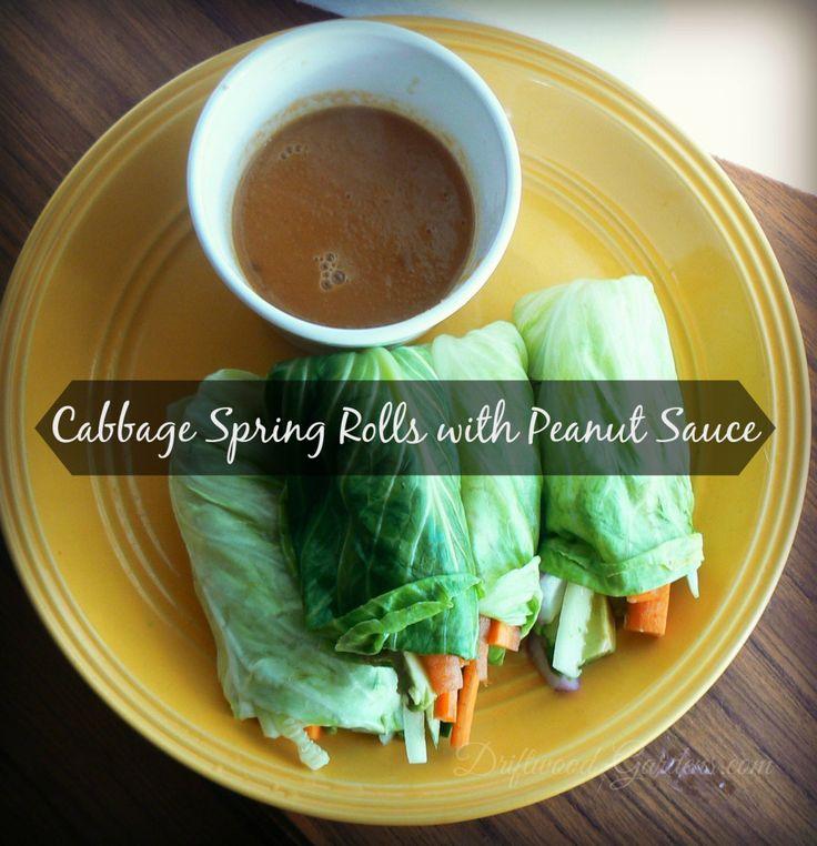 Cabbage Spring Rolls with Peanut Sauce (dairy-free, vegan)