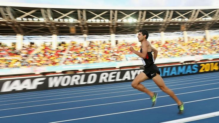 Olympic runner David Torrence found dead in Arizona swimming pool