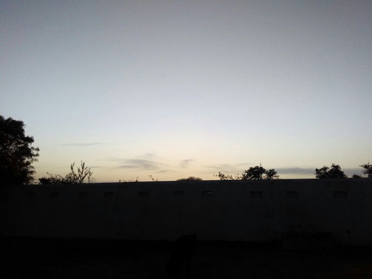 Evening view of rajasthan