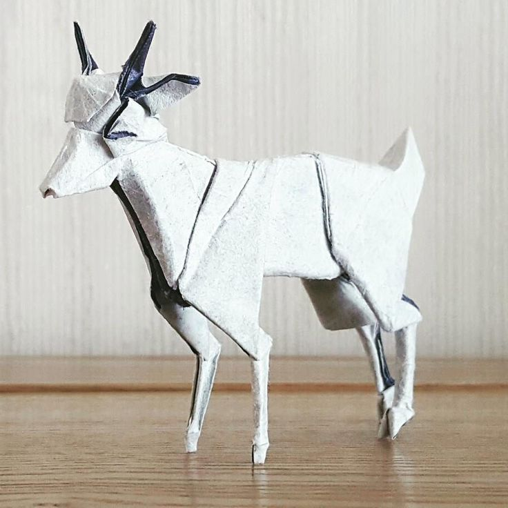 Goat - designed by me by Kim DongHyeon