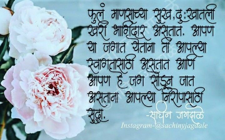 Pin By Ajay Akruti On Marathi Quites In 2020 Quites Quotes Instagram