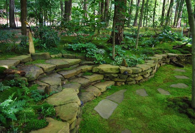 I would love to have moss as a grass replacement. Low maintenance. Yass.