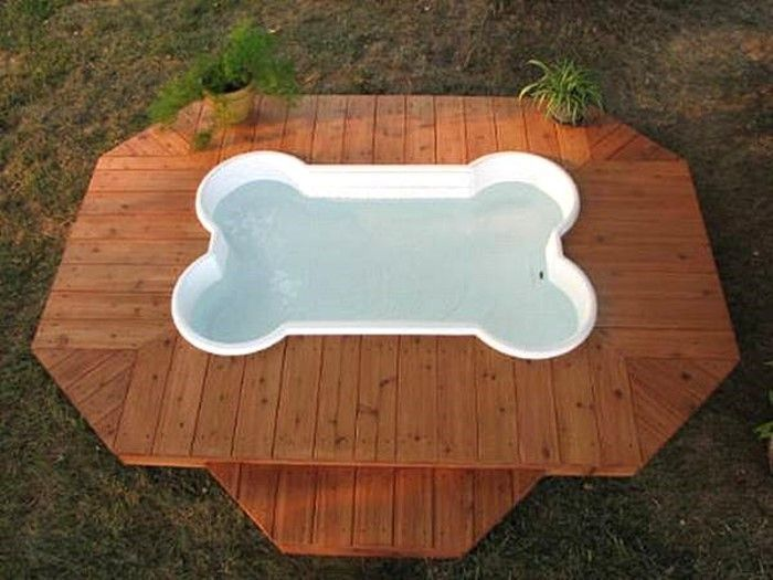 bone shaped doggie pool with deck pools pinterest
