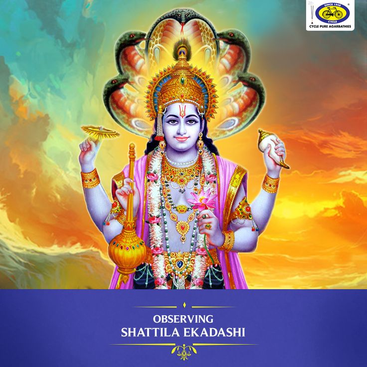 Shattila Ekadashi is observed tomorrow, 12th January 2018, in honour of Lord Vishnu. It falls on the eleventh day of the waning phase of the moon (Krishna Paksha Ekadashi) in the month of Magha according to the Hindu North Indian calendar. The significance of this festival has been mentioned in the Bhavishyottara Purana. Also known as Magha Krishna Ekadashi, Tilda Ekadashi, and Sattila Ekadashi, this festival sees the use of til/sesame seeds which are donated to the poor or offered as a…