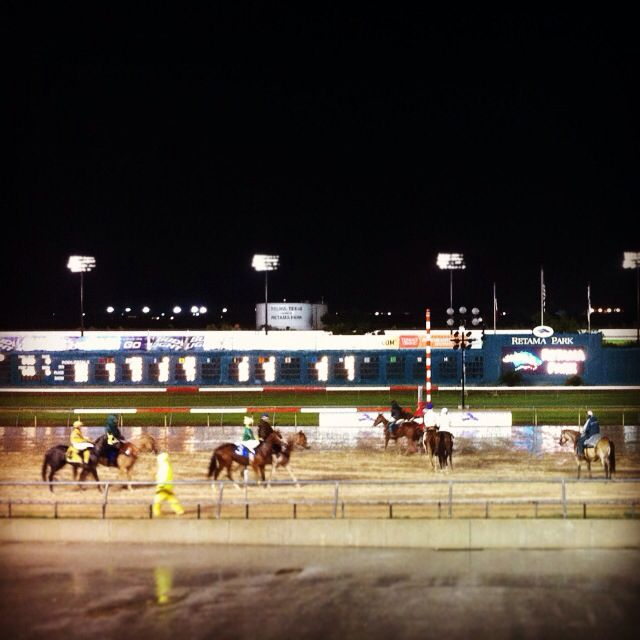 Oaks & Aspens Events is with wonderful friends at Retama Park! Sweet Toffy sounds like a #winner! Go Horse-E, Go!!! #oaksandaspensevents #party #planner #plansmart #weddings #events #horses #jockey #itsbettingtime #retamapark #sanantonio #texas #surroundingareas