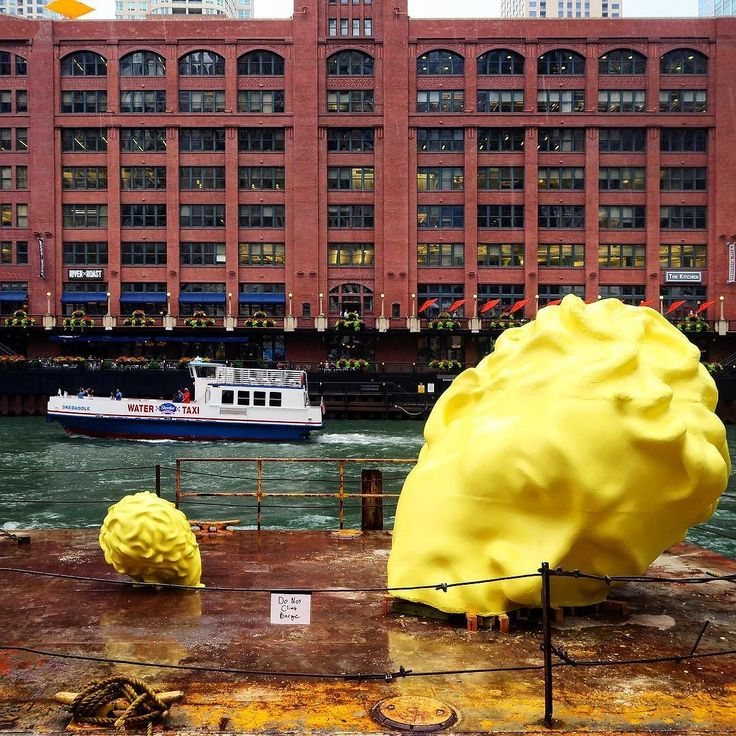 and art was travelling in Chicago River  not afraid of rain even  also Dont Clime Barge ;) #Art #ChicagoRiver #SummerRain #Prety #Afternoon #Rain #Colors #WackerDrive #RainWalk #Summer2017 #August2017 #HappyWednesday