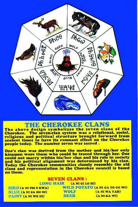 Cherokee Seven Clans Decal - Full-Color Self-Adhering Decal http://medicinemancrafts.com/collections/gifts-specialty-items/products/copy-of-cherokee-seal-decal