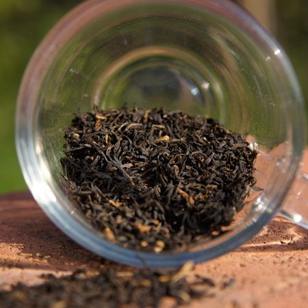Tee | Genuss+Mehr Online-Shop Gronau
