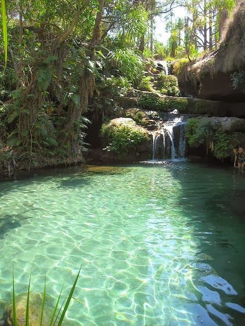 Isalo National Park, Madagascar.//In need of a detox? 10% off using our discount code 'Pin10' at http://www.ThinTea.com.au