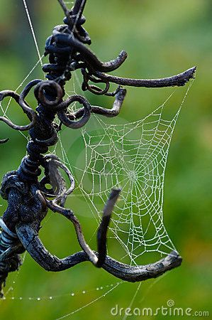 Spider web attached to iron... I love spider webs, they are a great precedent for tensile structure design