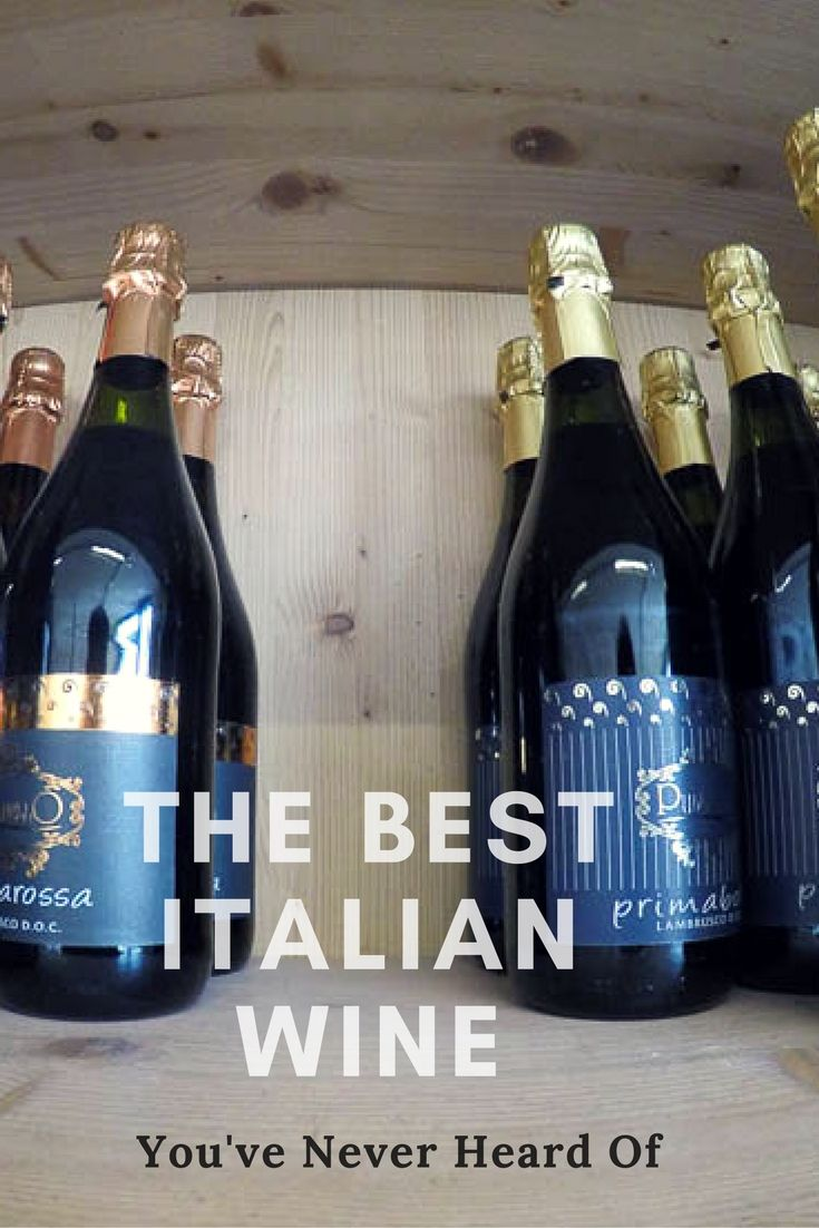 Looking for a unique Italian wine to drink? What about Lambrusco? When traveling in Emilia Romagna, Italy, and particularly in Modena, Lambrusco is one of the most interesting wines to drink in Italy.