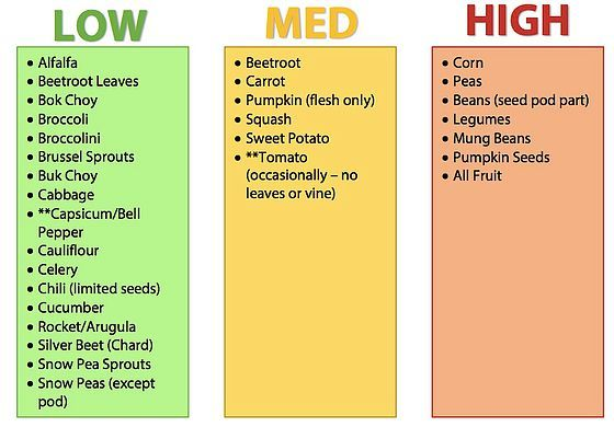 Maybe be more aware on what types of foods you're feeding your birds depending on how placid you need them to be.