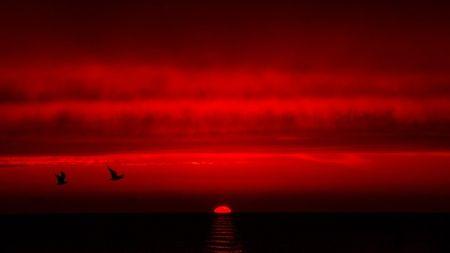 Red+Sunset+-+Sunsets+Wallpaper+ID+1966405+-+Desktop+Nexus+Nature