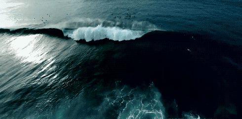 GIF скейт фотографии хабар искусство случайная мода Прохладный допинг фото совершенные старинных свежий инди Личная Гранж темно природа городского удивительные другие волны моря пастель качество золота современные бледные вертикальные Personnal