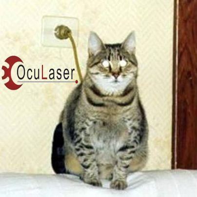 Nuevos gatos recargables… No, es otro efecto de una ilusión óptica. Visita nuestra web y pida una consulta www.oculaserperu.com