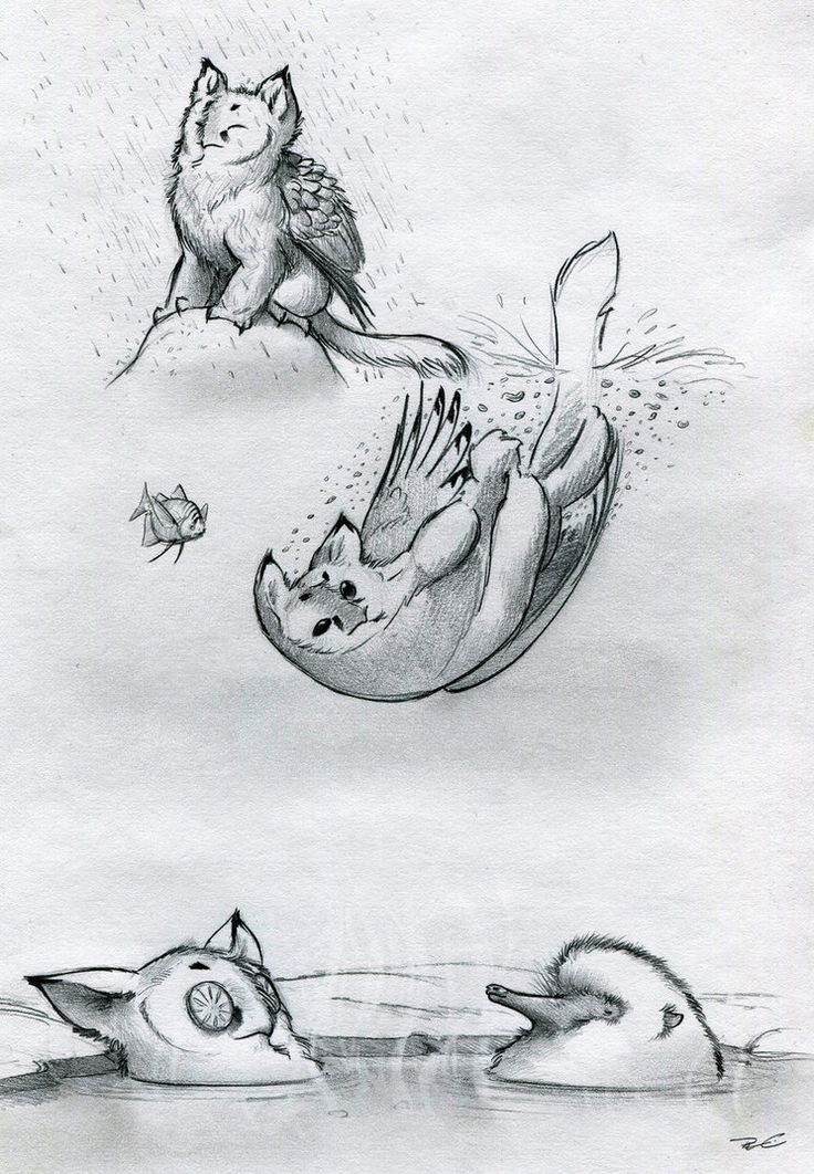 Owl Griffin Various Baths by RobtheDoodler on deviantART