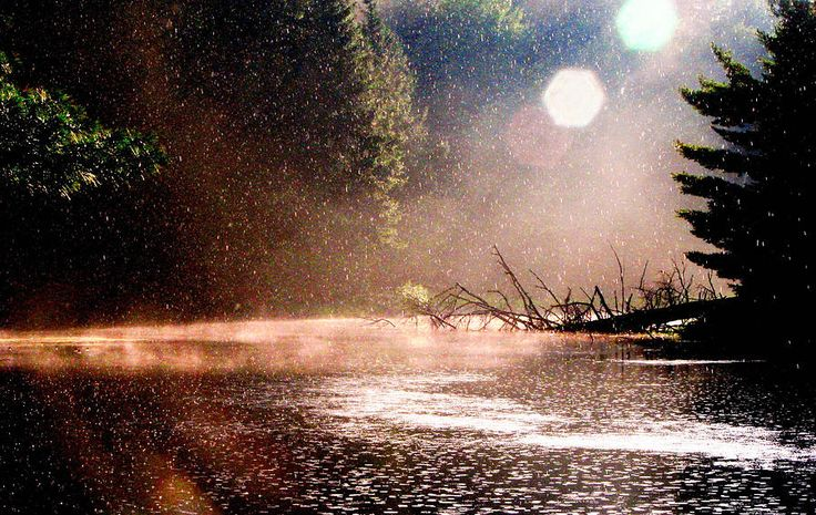 summer-rain-kara-ray.jpg (900×569)
