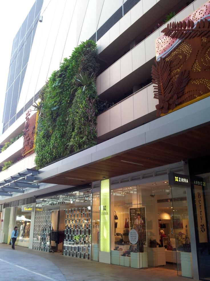 Remember to look up! We love the vertical gardens in Top Ryde Shopping Centre #Ryde #TopRyde #TopRydeShoppingCentre #TopRydeCity #RydeLocal #VerticalGarden #CityofRyde