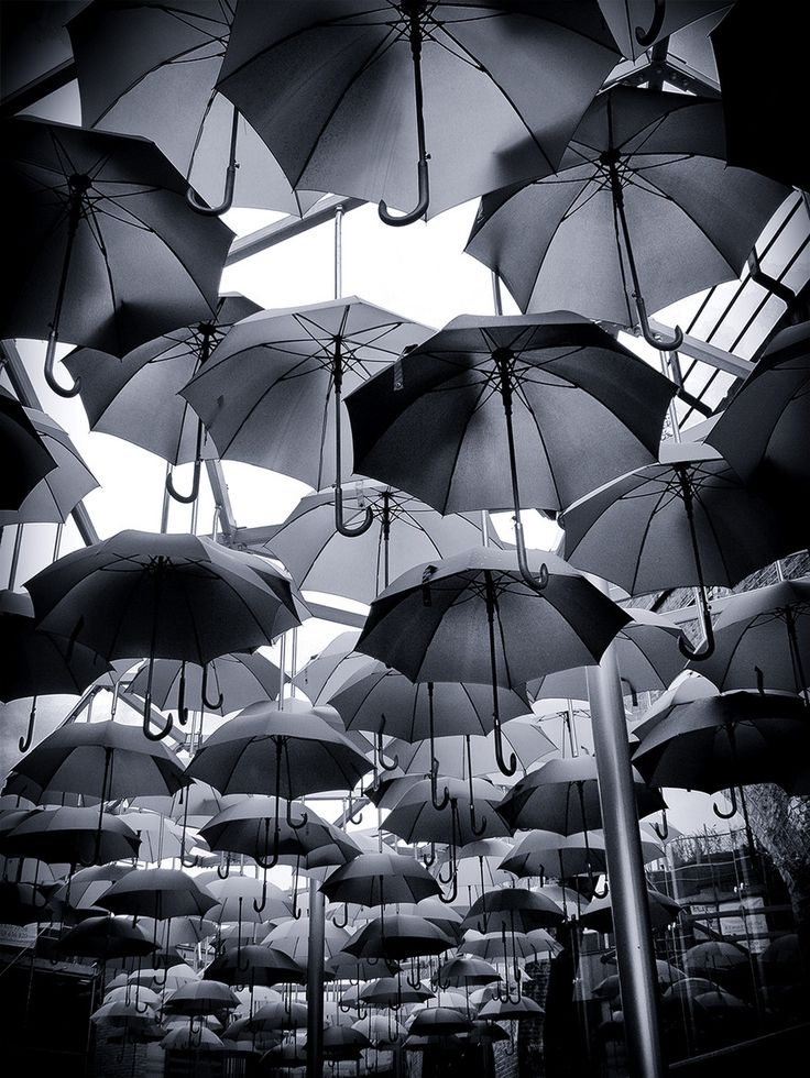 Portugal - Umbrella Installation. We've seen it  in color but we love it in black and white #eerit