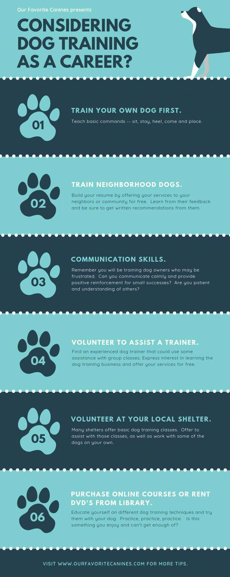 Reliable Functioned As Command For Dog Training Dog Training