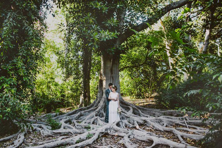 Los Angeles County Arboretum Botanical Garden Alex Rapada Photography Weyberg Waterfall