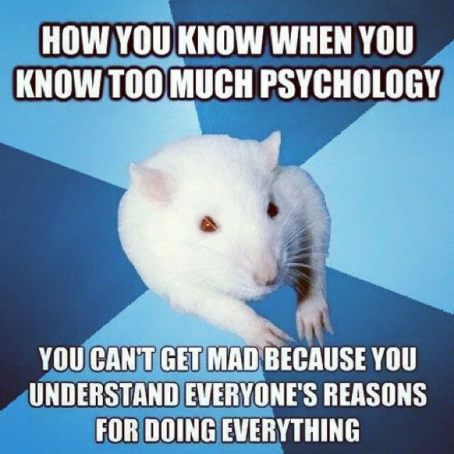 Oh my word! This is my life. Too much psychology!