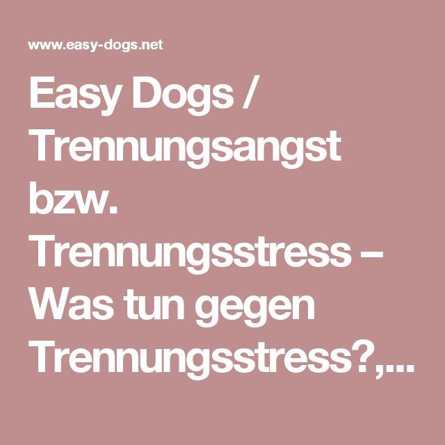 Easy Dogs / Trennungsangst bzw. Trennungsstress – Was tun gegen Trennungsstress?, Teil 4, Maria Rehberger, Easy Dogs Nürnberg