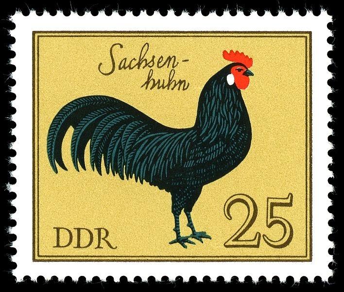 DDR, Deutsche Demokratische Republik (East Germany) Postage Stamp with Rooster