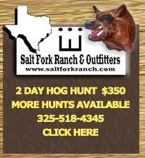 Texas Hog Hunting North Central Texas Wild Boar Hunting South Texas Hunting Wild Boar Hunting  Our mission is simple, we strive to provide the Texas hog hunting, turkey hunt, buffalo hunting and exotic animal hunt in Texas can offer. Whether it is our Nor
