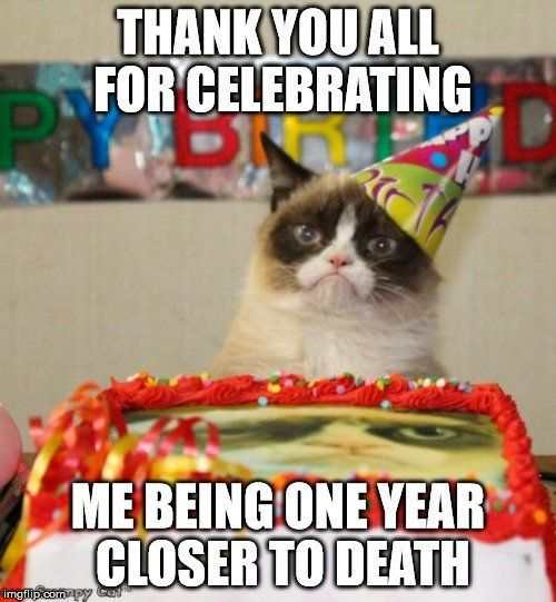 0bd9316ae697aad7028a3a3f29a80f91 9 best birthday quote images on pinterest funny happy birthday
