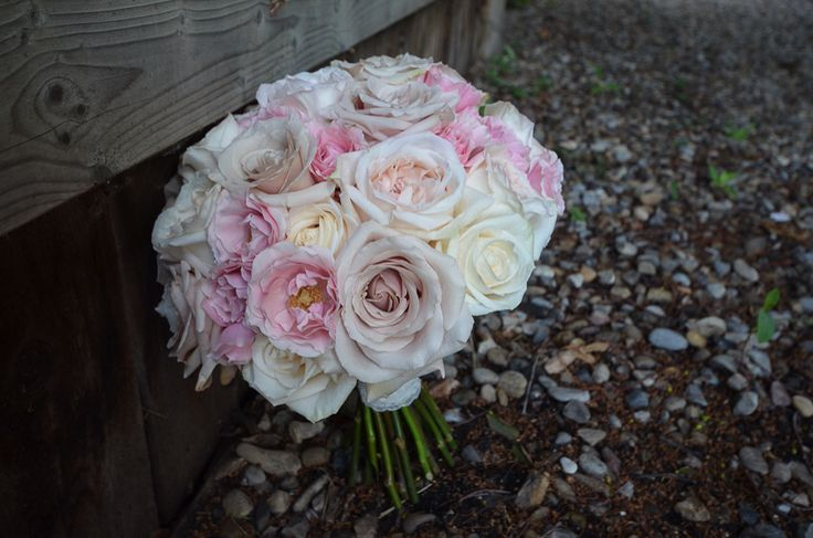 All rose bridal bouquet with 'Vendela', 'Quicksand', 'White O' Hara' & 'Majolica' roses!   Flowers by Janie- Calgary & Banff Wedding Florist   www.flowersbyjanie.com