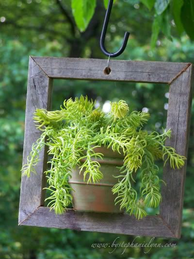 What a cute idea! plant hangers: Plant Hangers, Garden Ideas, Craft, Outdoor, Plants, Gardening, Gardens, Framing Succulents