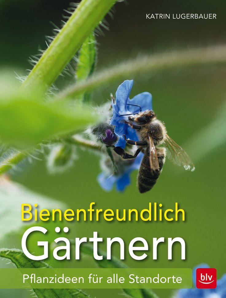 Nice Bienen sch tzen und f rdern das Garten Praxisbuch Alle M glichkeiten Bienen ganzj hrig anzulocken