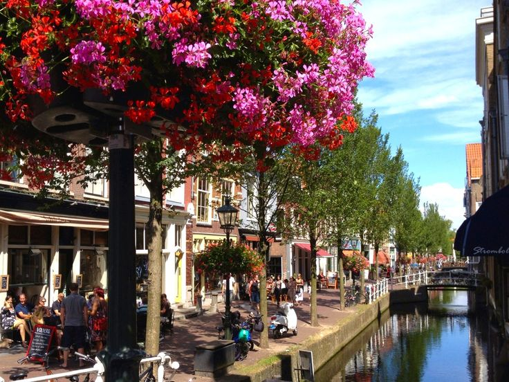 Alkmaar Shopping | 15 Best Alkmaar Images On Pinterest Holland Netherlands And