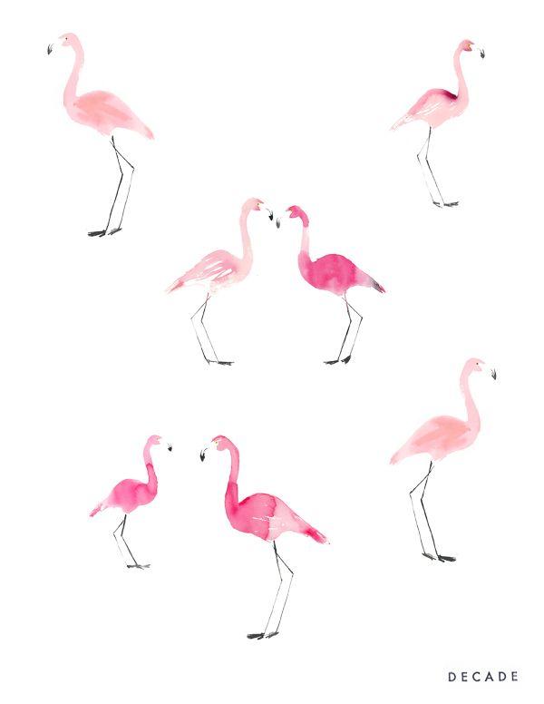 flamingos by Decade Diary