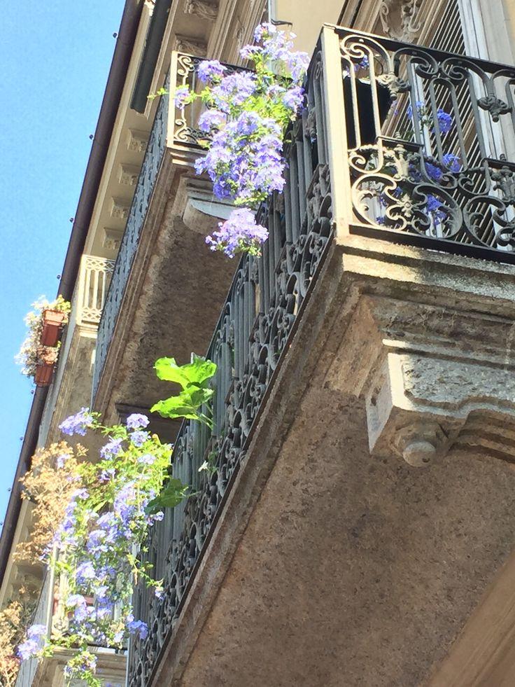 Torino Immobiliare