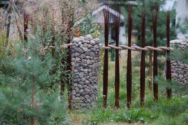Tilanjakaja pajunipuista