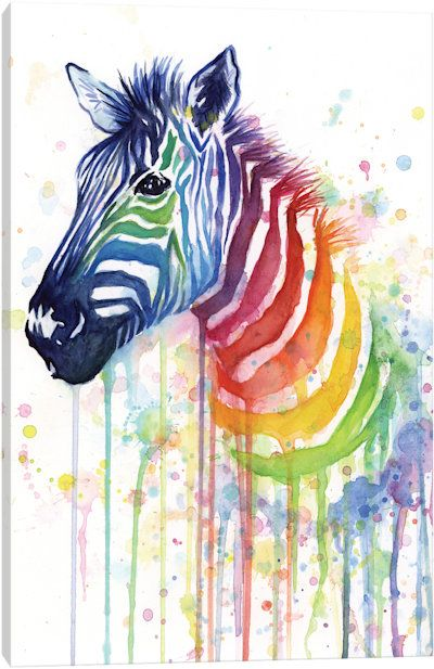 Rainbow Zebra by Olga Shvartsur Canvas Print