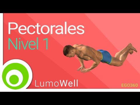 Ejercicios para pectorales en casa nivel 1. Rutina sin pesas - YouTube