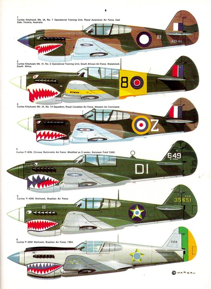 P-40 WW2 different air forces
