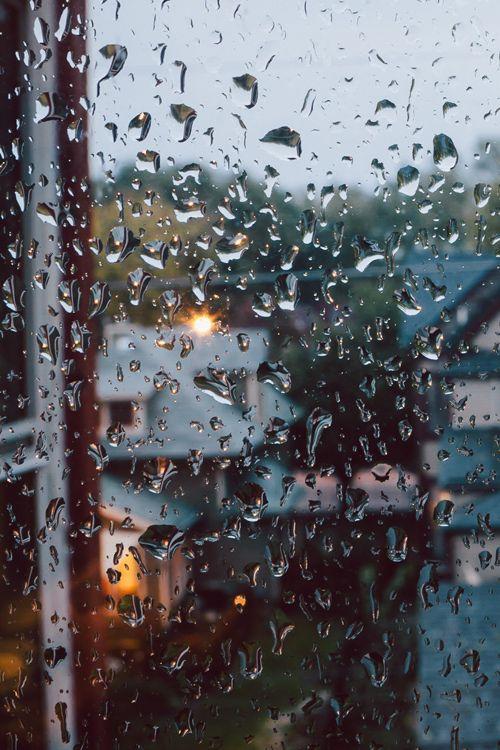 plasmatics-life: Rainy Day   by: { Ngaio Nobumoto}