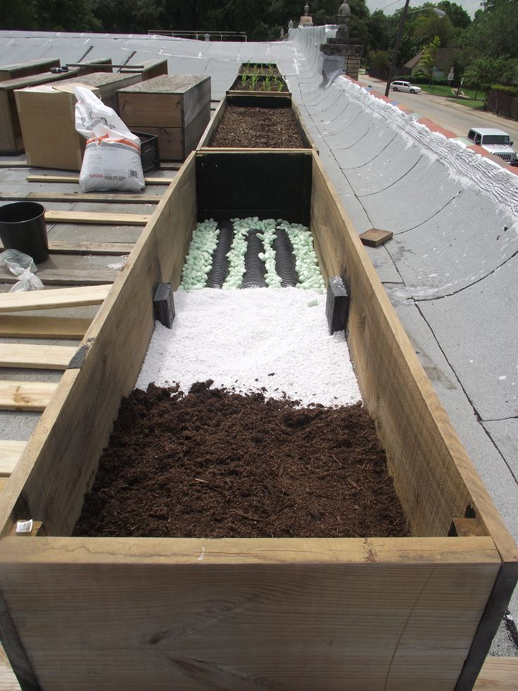 Steps to a Roof-Top Garden